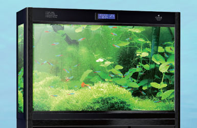 Acrylic Aquariums Glass Aquariums In Vancouver Bc Cleair Aquatics